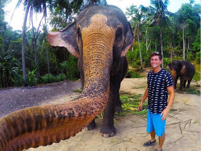Foto: Elefante.