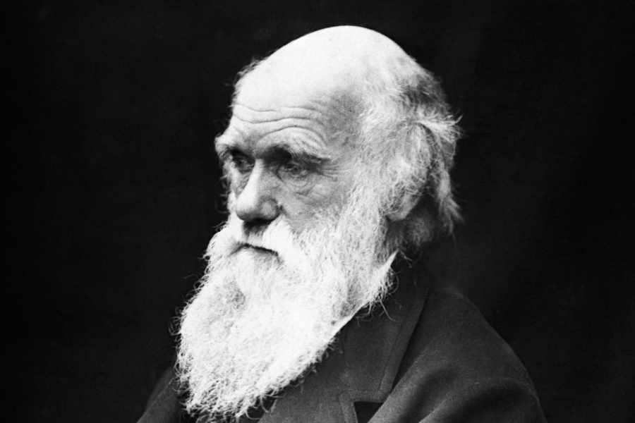 Charles Darwin melancólico?