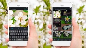 iPhotoChannel_App_Shutterstock_BuscaReversa