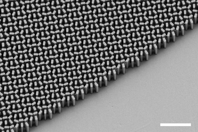 Uma visão microscópica da lente de metamateriais registrada pelos cientistas da Harvard