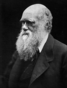 An 1869 portrait of Charles Darwin, the British naturalist whose theory of natural selection fundamentally altered the world's opinions about the evolution of living things.
