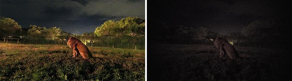 À esquerda uma fotografia com a Exilim FR110H e à direita como seria com uma câmera comum da Casio.