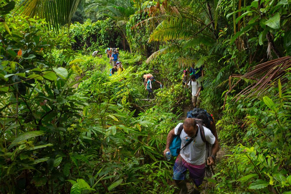 Caminho no meio da mata em Mentawai   Foto: Klaus Schlickmann