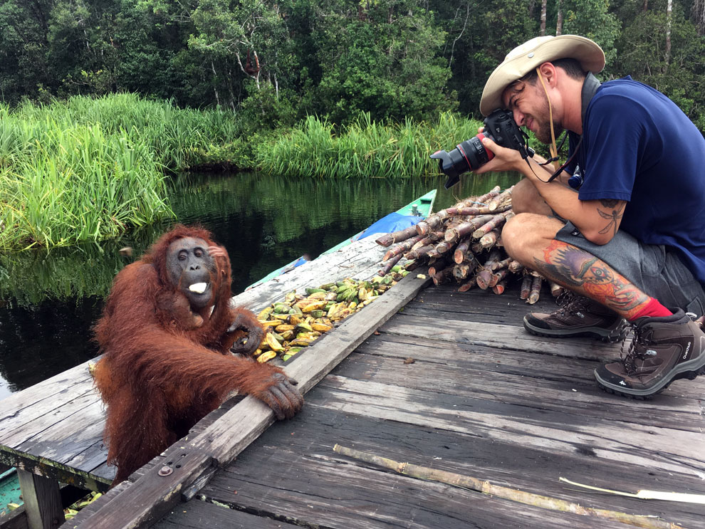 O fotógrafo Klaus Schlickmann com a Canon 5D Mark III fotografando o orangotango (foto abaixo)