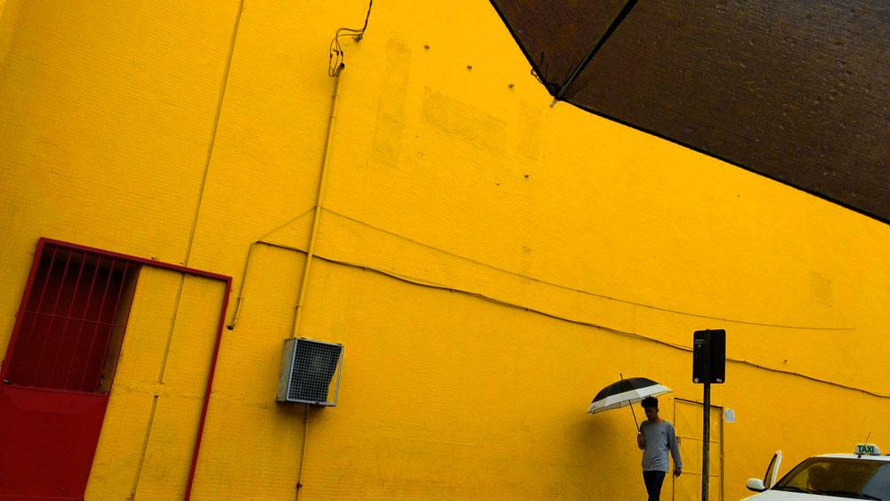 Foto feita com celular Motorola G4 Plus | Foto: Julio Cezar Braz
