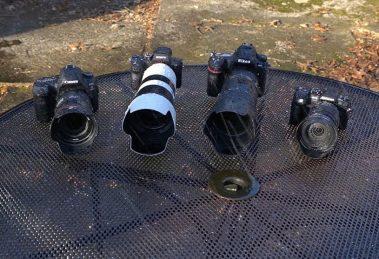 """Qual a melhor câmera no """"teste de tortura na água"""": Nikon, Canon, Olympus ou Sony?"""
