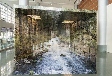 Artista cria fotos que você pode 'entrar' nelas